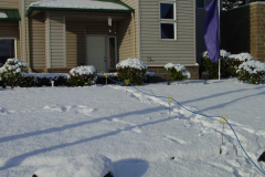 Joes-Yardsticks-in-winter